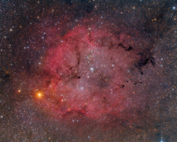 IC 1396 and Surrounding Starfield