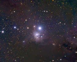 IC348 Reflection Nebula